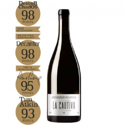 Michelini i Mufatto LA CAUTIVA Gualtallary Malbec 750ml 98pts