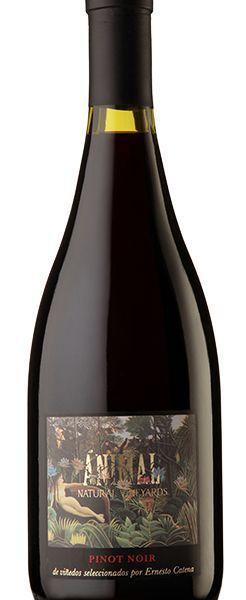 Vinho Argentino Animal Pinot Noir 750ml by Ernesto Catena